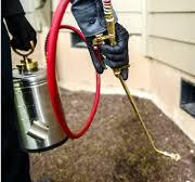 Pest Control, PEST CONTROL SERVICES: IT STARTS WITH YOU BECAUSE PREVENTION IS ALWAYS CHEAPER THAN CURE