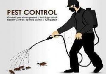 Pest Control Services, 6 MAIN REASONS WHY PEST CONTROL SERVICES ARE VITAL PART OF OUR LIVES