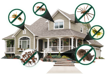Pest Control Industry, COOL SOFTWARE BUG TO HIT THE PEST CONTROL INDUSTRY!