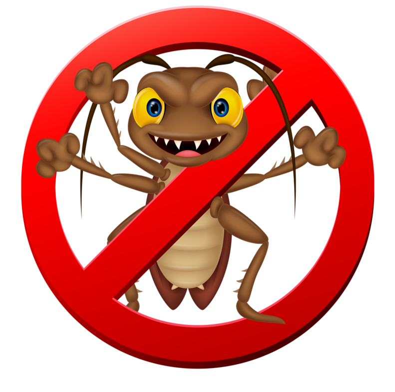 pest control, The Most Effective Way to Get Rid Of Pests in Residential Places