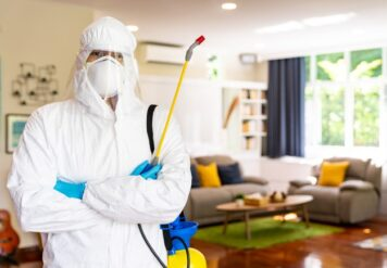 , Disinfect Virus From Your Home in Bikaner With Professional Pest Control Company