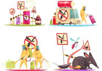 , Get Rid of Common Winter Pests in Jodhpur