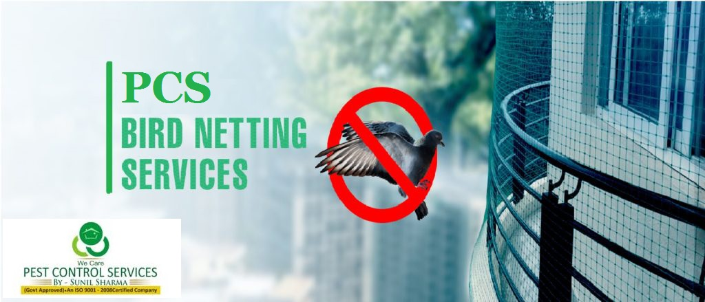 , How to Overcome the Problem of Birds with Professional Bird Netting?